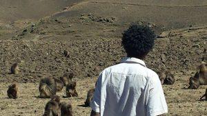 Muluken Tesfaw KelemQend journalist