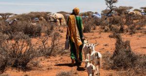 ethiopia-meeting-deadly-disease-head-on
